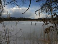 Großer Commerauer Teich
